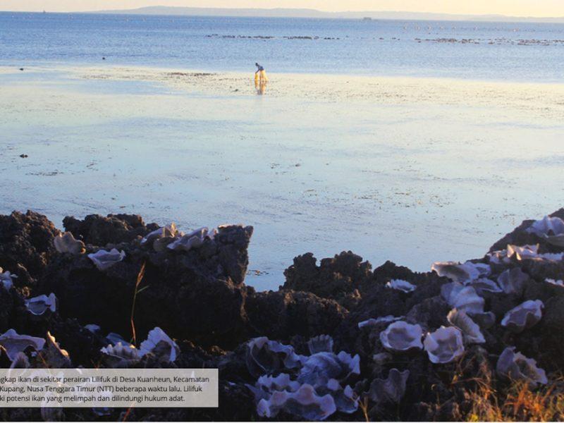 Nelayan menangkap ikan di sekitar perairan Lilifuk.