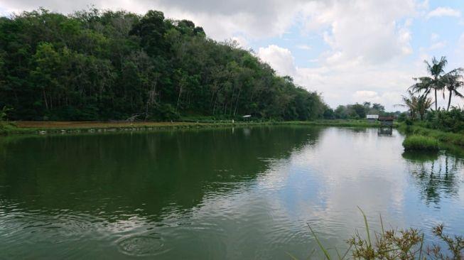 Lanskap Bukit Cogong di Sumatera Selatan