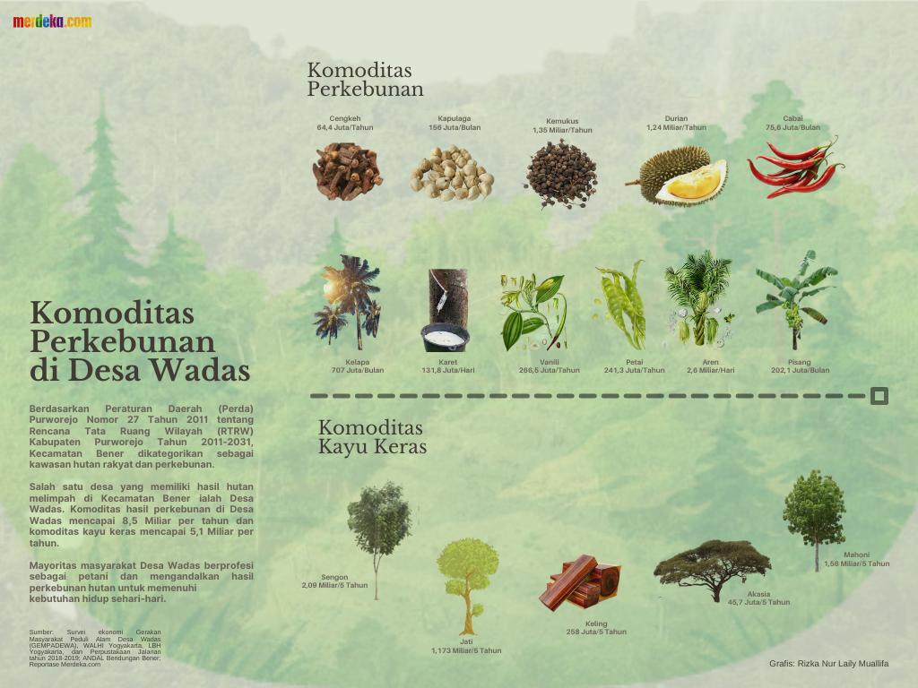 Infografis Komoditas Perkebunan di Desa Wadas